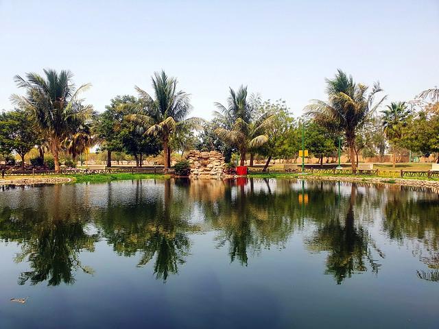 #withgalaxy #samsung #s10e #yanbu #ksa #yanbulakepark #palms #mobilephotography #lake #datepalm #reflection