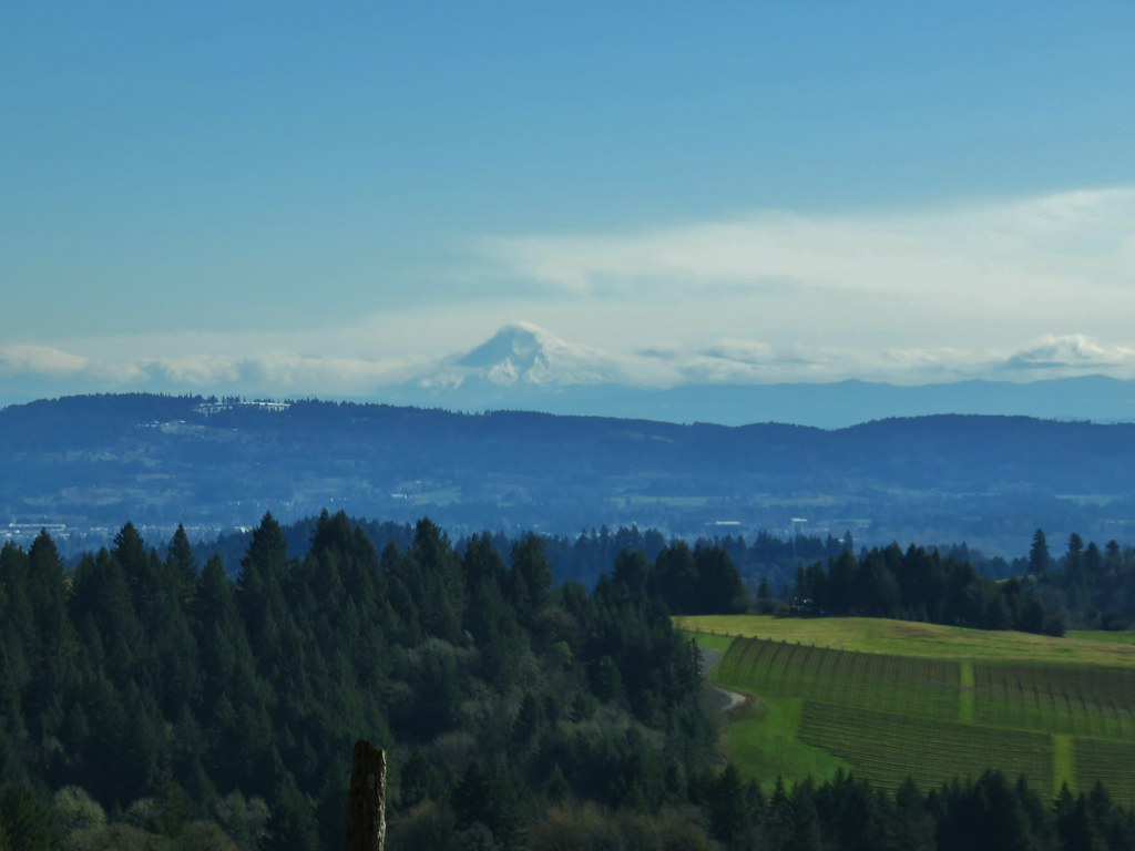Mt. Hood from a viewpiont at Trappist Abbey