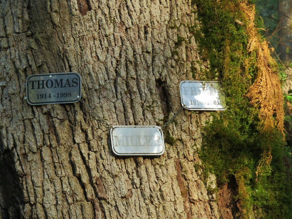 Memorial plaques at MIller Woods