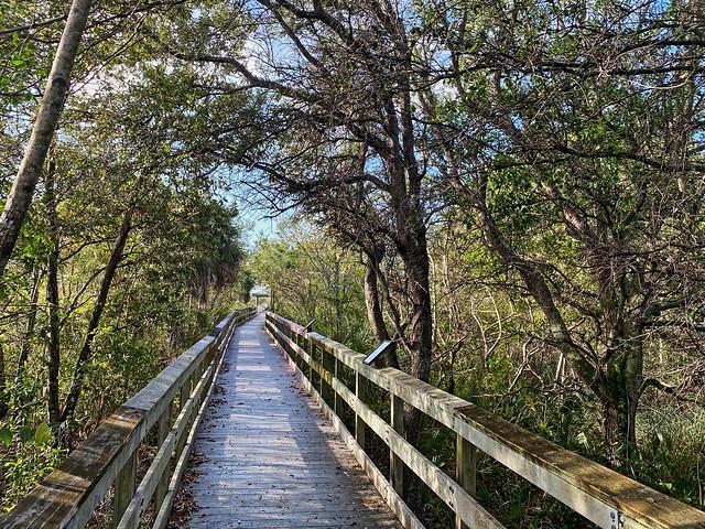 Chapel Trail boardwalk 01-20200314