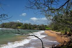 Rifle Range Beach,Innes Park