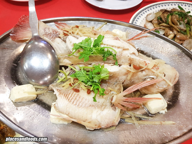 restoran fook loy steam fish with ginger