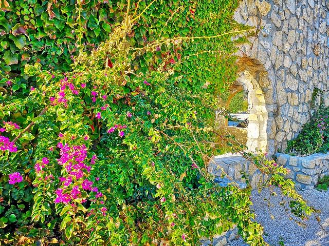île de Bendor - Côte d'Azur France -IMG_20191109_153838