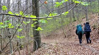 Naturparkweg Leine-Werra