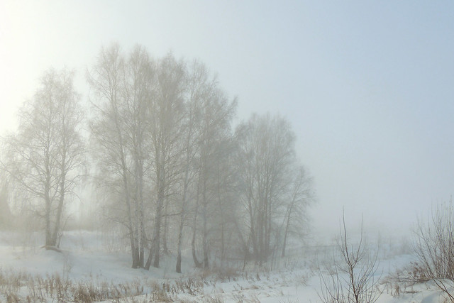 Spring in Siberia. March. Misty morning.