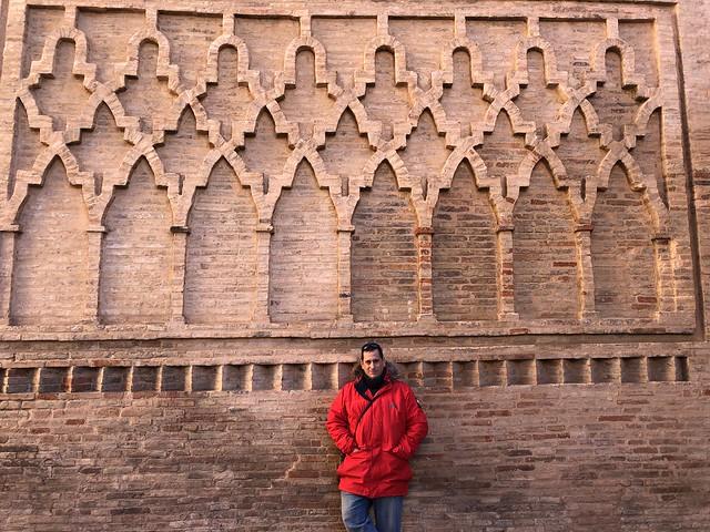 Sele en un muro mudéjar de Teruel