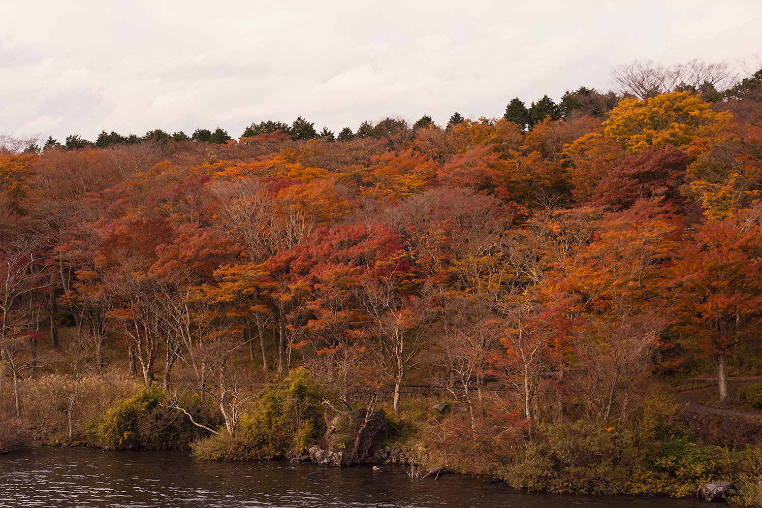 18hakone-japan-lakeashi-fallfoliage-autumn-travel