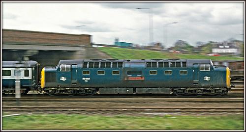 panned pan newarkontrent notts nottinghamshire 1977 deltic class55 napier 55002 thekingsownyorkshirelightinfantry ecml eastcoastmainline agfact18 1n08 speed motionblur panning