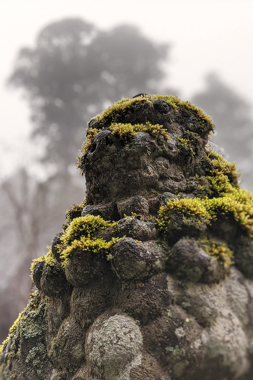 16hakone-japan-shrine-statue-moss-travel