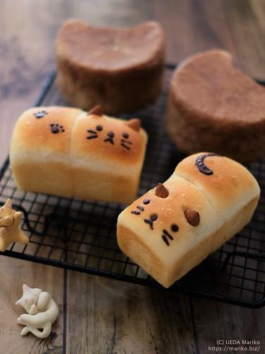にゃんこミニ食パン 20200315-DSCT4003 (2)