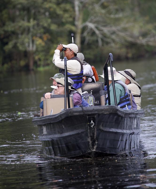Birding the Amazon_Ascanio_Amazon Cruise_DZ3A8096