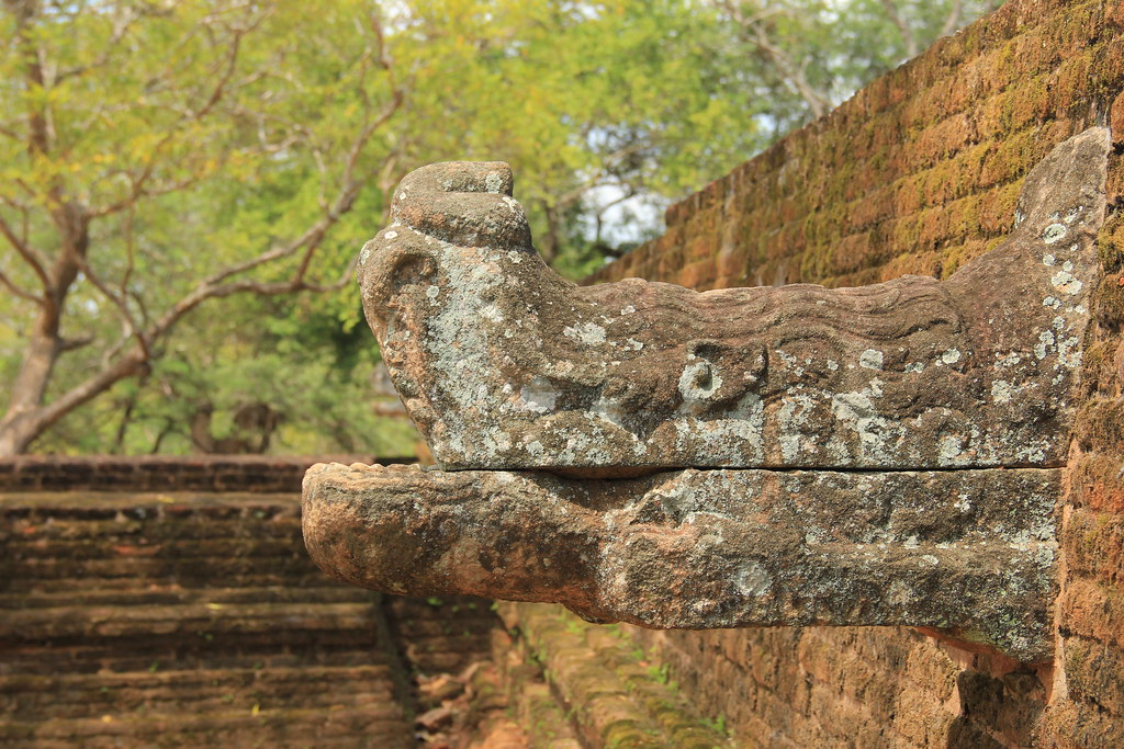 Weird creature protruding from one of the walls, Polonnaruwa
