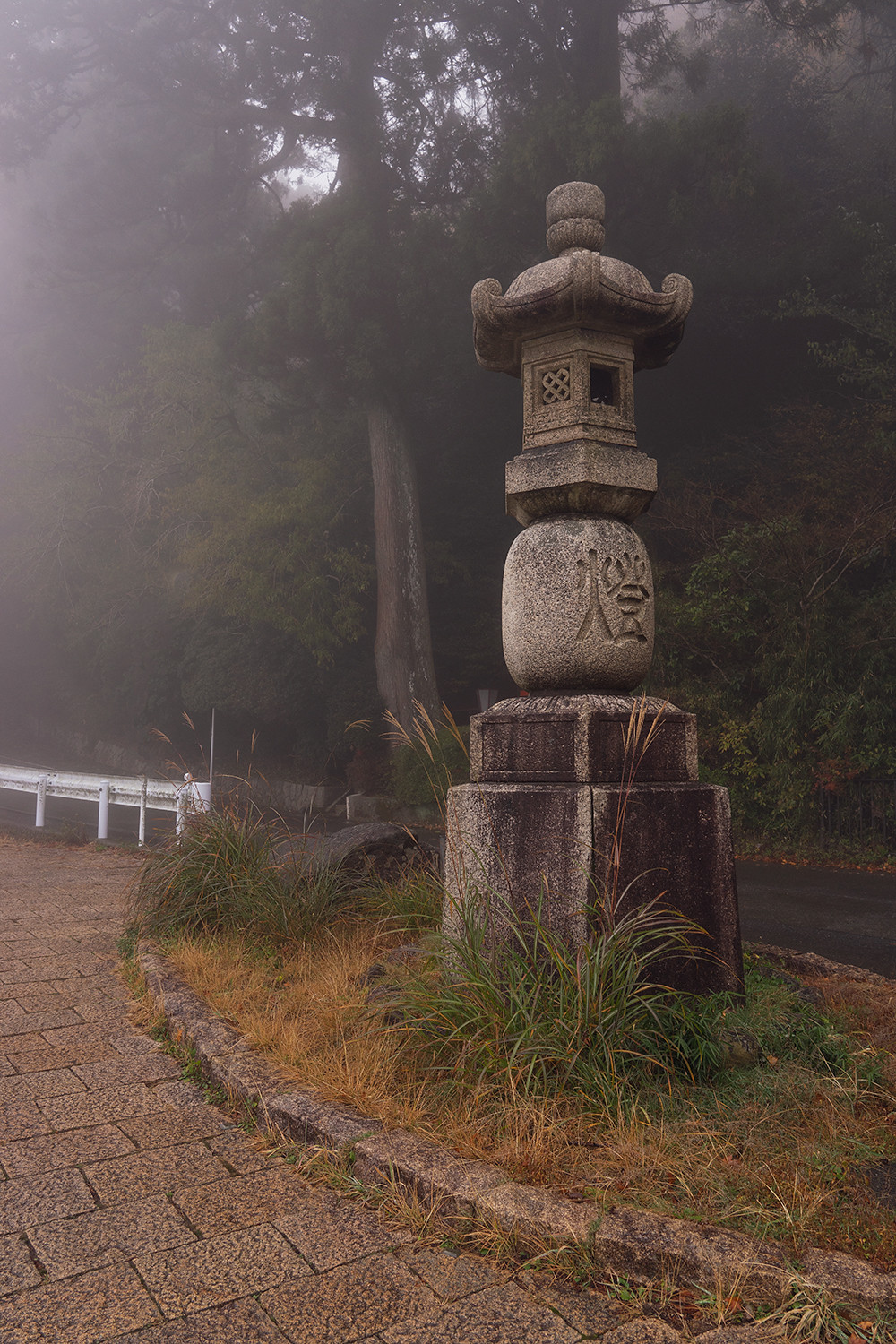 15hakone-japan-ancientcedaravenue-travel