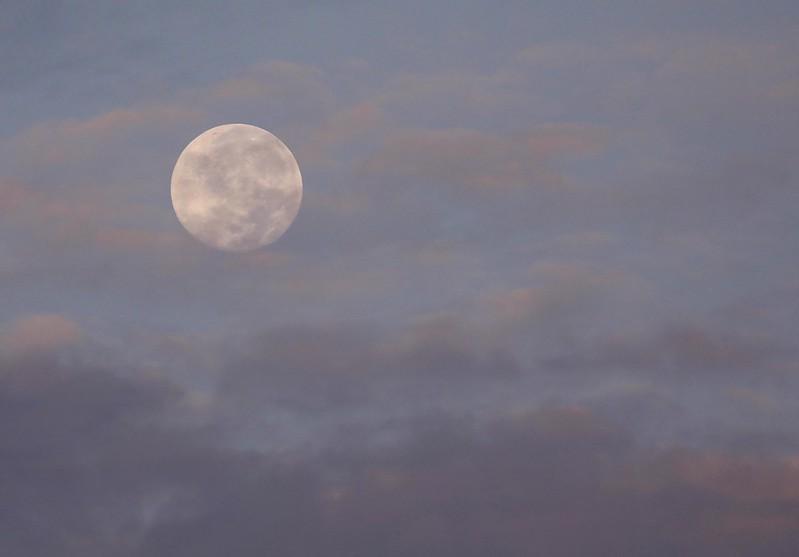 Super moon_Ascanio_Amazon Cruise_DZ3A7517