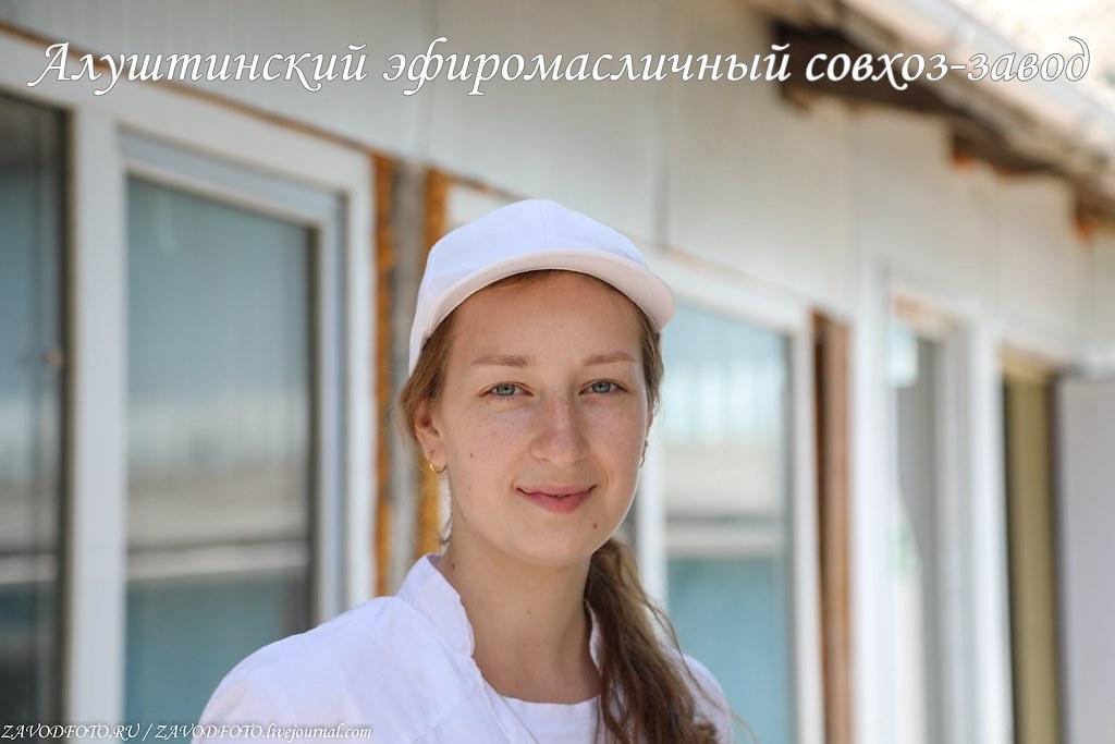 Алуштинский эфиромасличный совхоз-завод