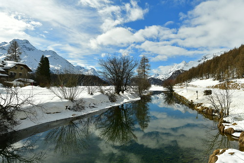 Reflections in Sils