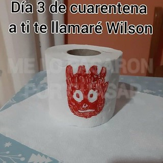 Mi amigo Wilson