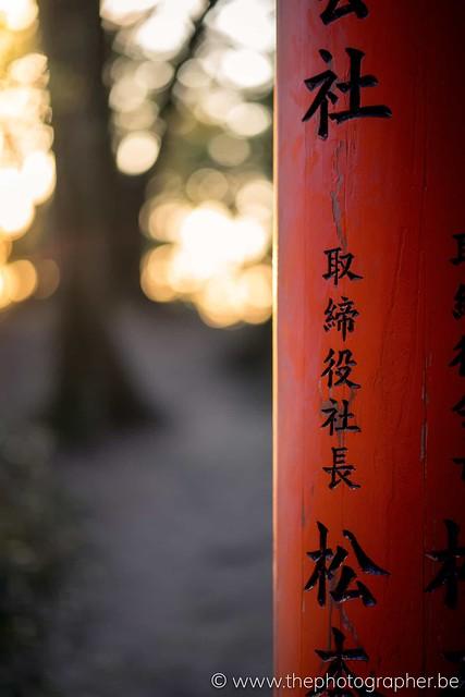 Zonsondergang bij de torii van Kyoto