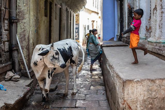 The Streets, Varanasi