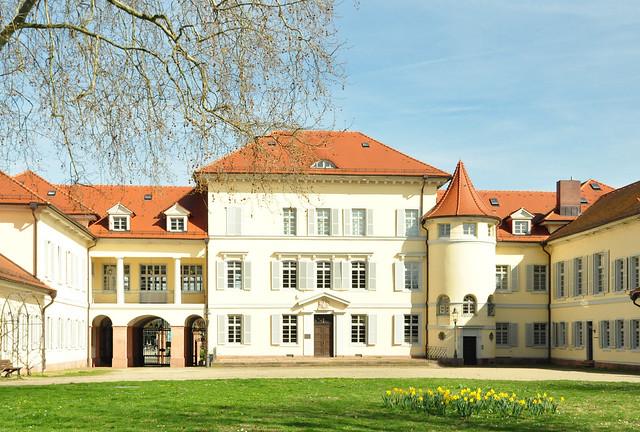 März 2020 ... Beginn der Magnolienblüte im Schlosspark Neckarhausen ... Brigitte Stolle
