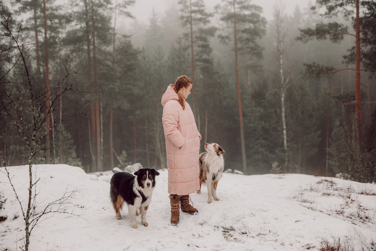 östersundomin koirametsä-6