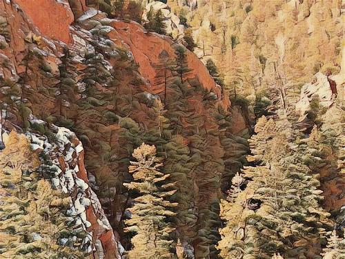 mountains colorado pikespeak trees forest aspen fir clay limestone rock summit gardenofthegods rockformations landscape scenery rockymountains texture