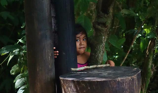 Mexico, Kleines Mädchen bei Palenque , 19609/12484