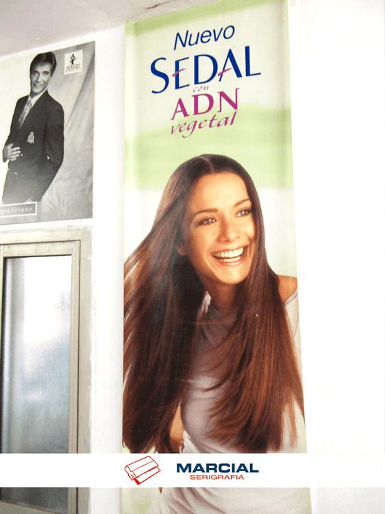 """Lona impresa en serigrafía hace muchos años, de la marca """"Sedal"""". Impreso en cuatricromía por Marcial Serigrafia."""