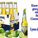 Coronavirus & Lyme disease