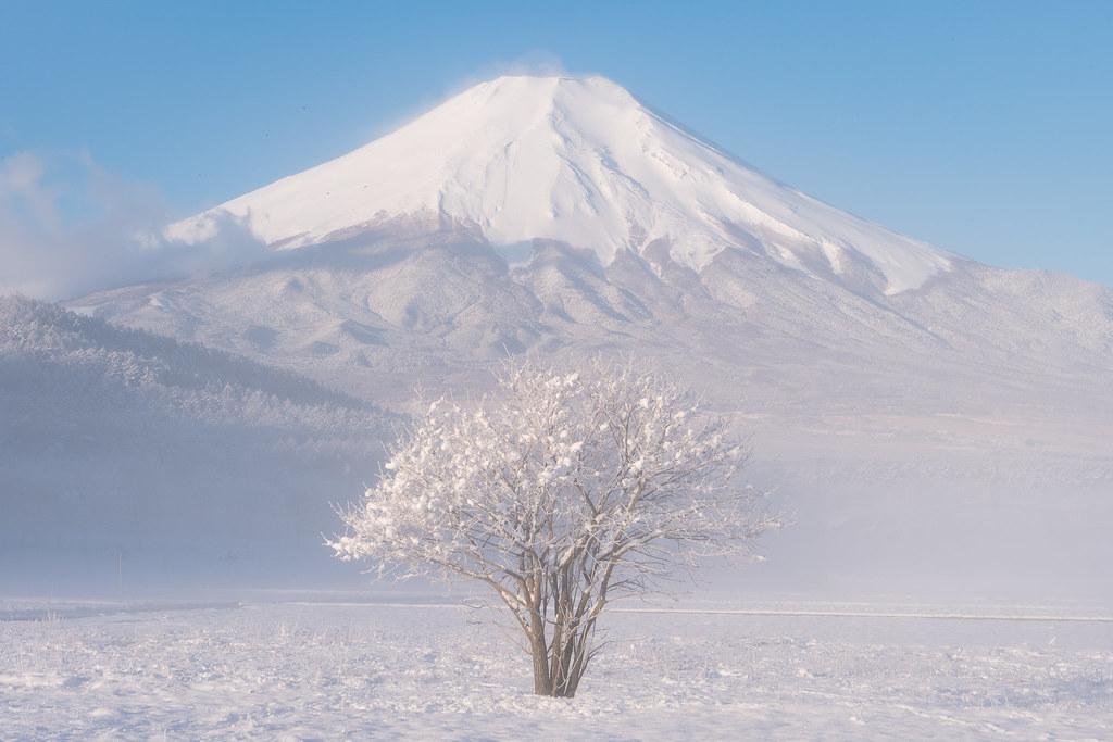 Winter Morning in Oshino
