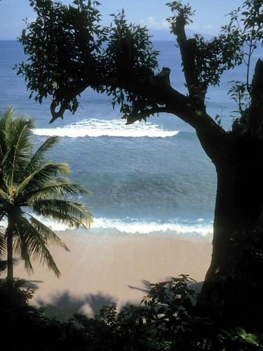 beach coast puertogalera orientalmindoro philippines