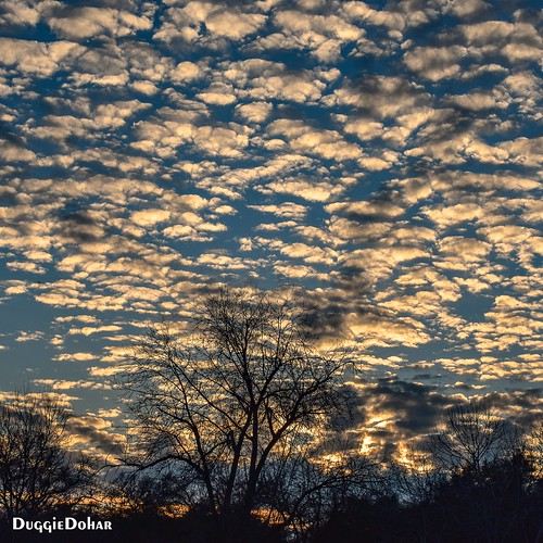 clouds cloudporn sunset sunsets sunsetlight fairoaks california sky nikond5500