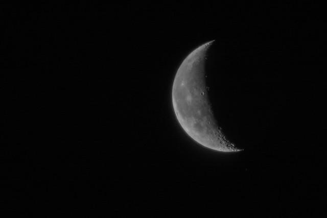 Moon over the quarantine