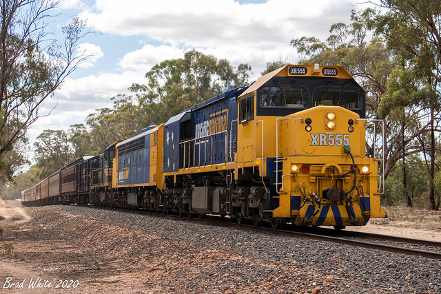 XR555, S306, H5 8294