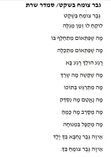 smadar sharett סמדר שרת משוררת כותבת אמנית יוצרת ישראלית אומנית עכשווית מודרנית מנחה תהליכי כתיבה של יוצרות ישראליות עכשוויות אוהבות  שירה