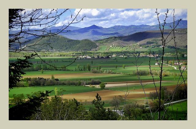 Fields just outside Anghiari