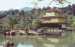 The Golden Pavilion (金閣寺)