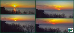 AngelCam at LakeErieBluffs