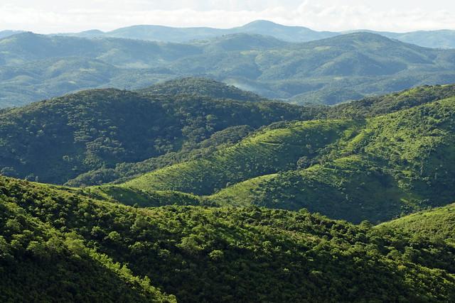 The Viphya mountain