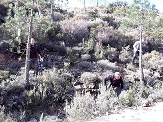 Travaux sur le tronçon du chemin de Luviu en direction de Murata
