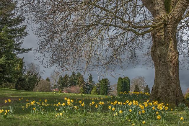 Simply Spring