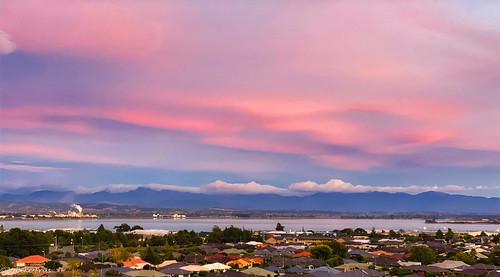earlymorning myview nelson nelsonprovince newzealand