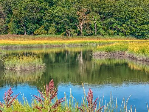 marsh river reeds refections grass landscape stonycreek branford connecticut