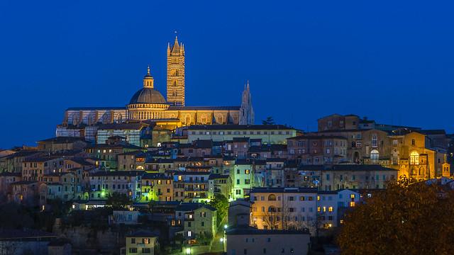 Siena Night Lights