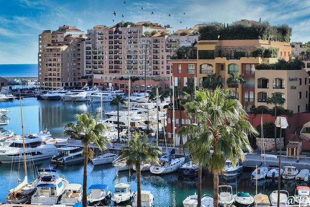 port du Cap d'Ail - Côte d'Azur France 4622004534952838851_3D0A5071