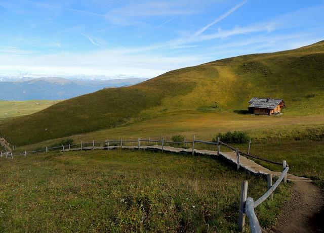 Alpe di Siusi 7