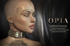 OPIA.- Ambross Collar (for man and woman)