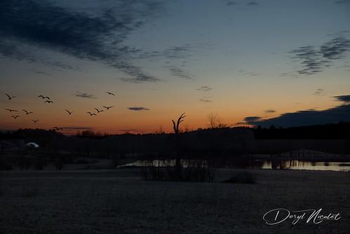 sky sunrise spring pond blue canon5dm3 daryl nicolet