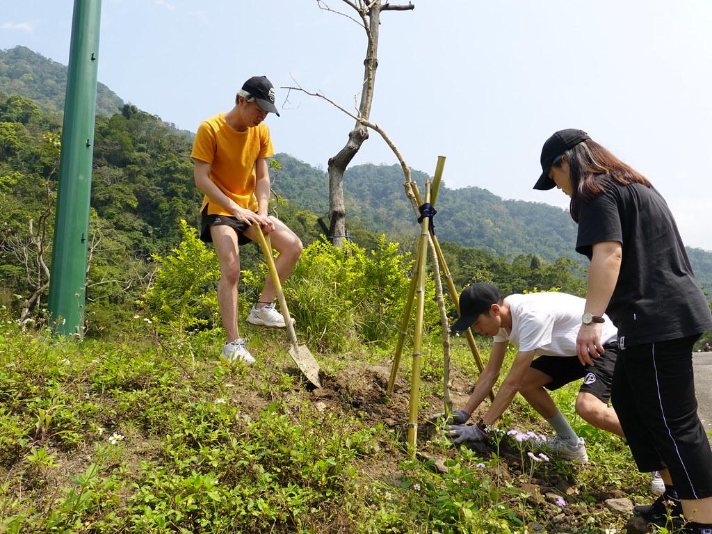 參與一樹一山的民眾同心協力把樹種好。孫文臨攝