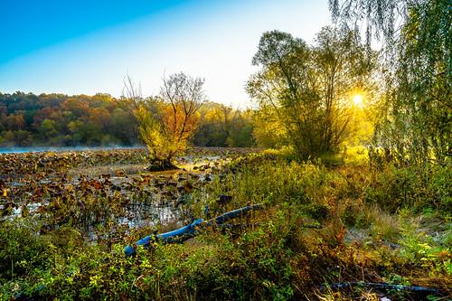 fall lake sun sunrays colors sunrise